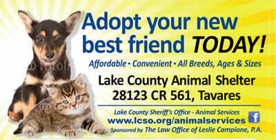 Lake County Animal Shelter